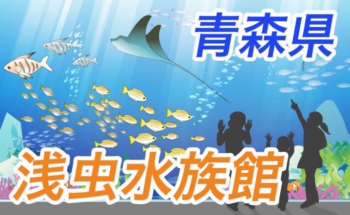 【子連れで青森県】青森県営浅虫水族館の見どころは?施設情報やグッズ・お土産、食事なども紹介!